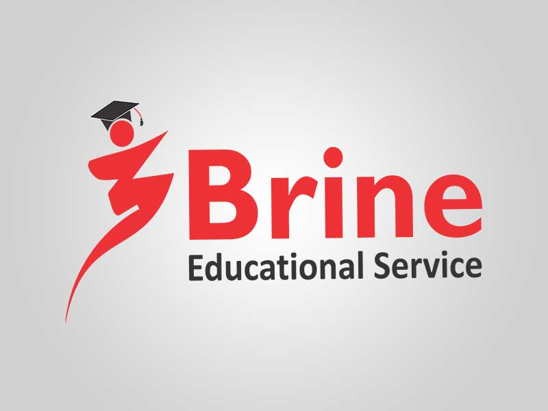 Brine Educational Services - Synovers